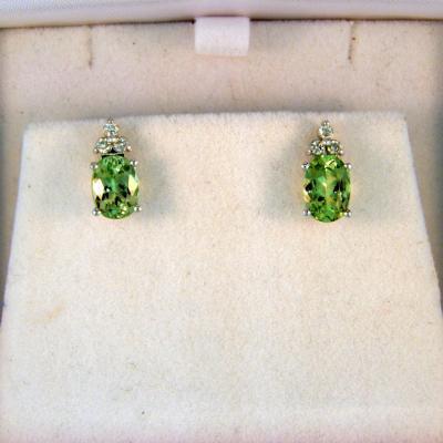 CroppedImage400400 2.50cttw merelani mint garnet earrings