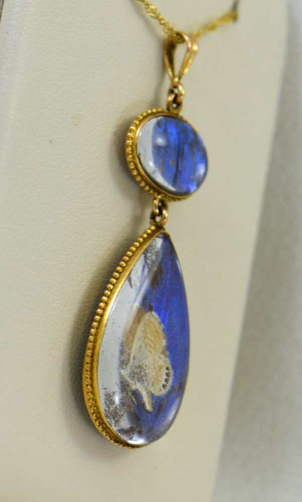 Edwardian Gold insect specimen Pendant with butterfly wing under crystal with moth 2.JPG